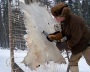Freeze-scraping a deer skin at 20 degrees below zero
